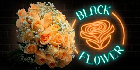 <p>BLACK FRIDAY: até<strong>97%OFF+Frete Grátis </strong>para compras acima de R$85,00</p>