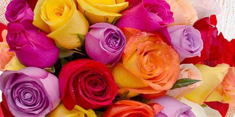 <p>Especial Primavera com at&eacute; 30% OFF</p>